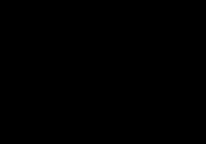 Schwarz-Weiß Krähe